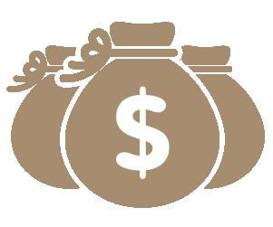icon bani